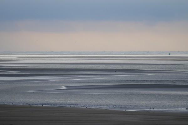 Baie de Somme - phoques - guerre mondiale WW1 - Crotoy - Hourdel
