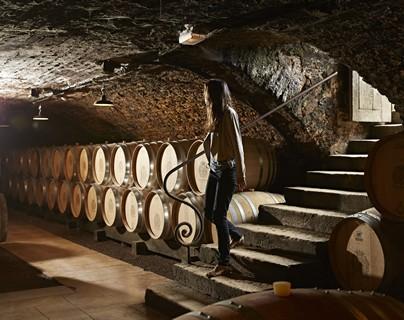 Caves du château de Pommard