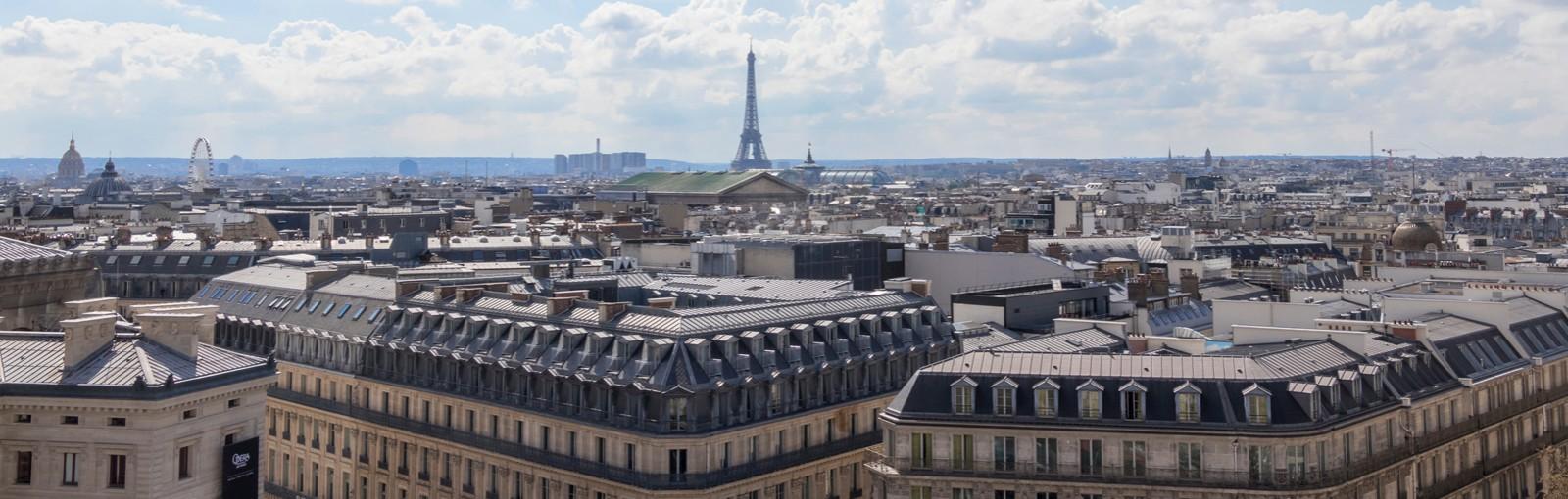 Toits de Paris depuis terrasse