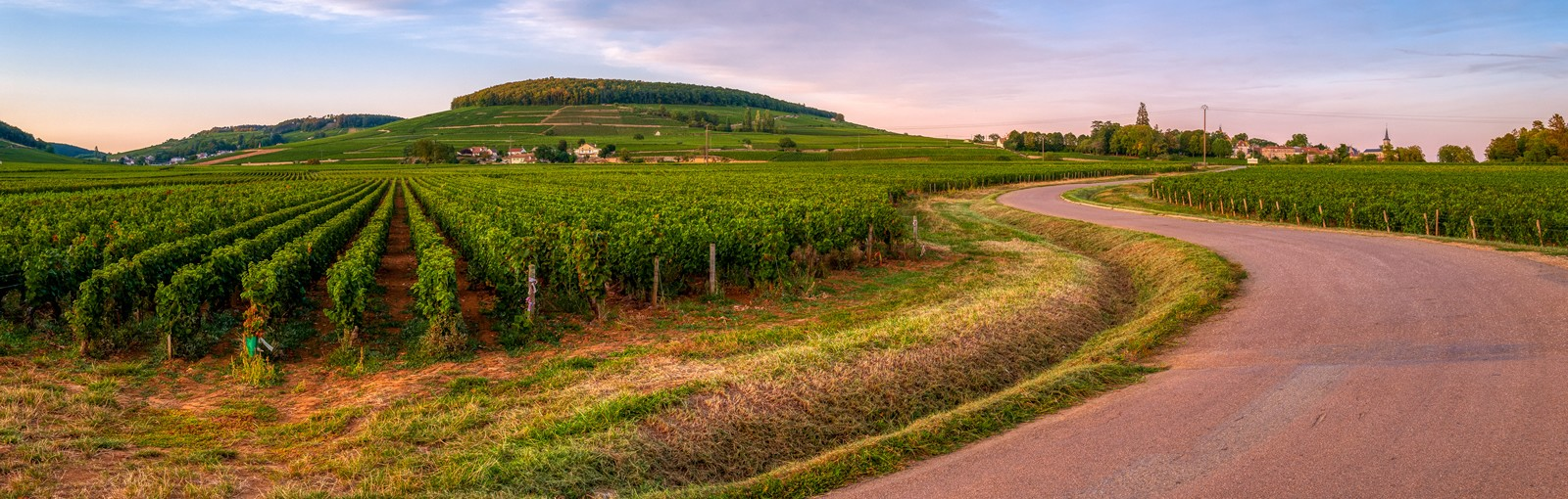 Bourgogne - La Route des Grands Crus