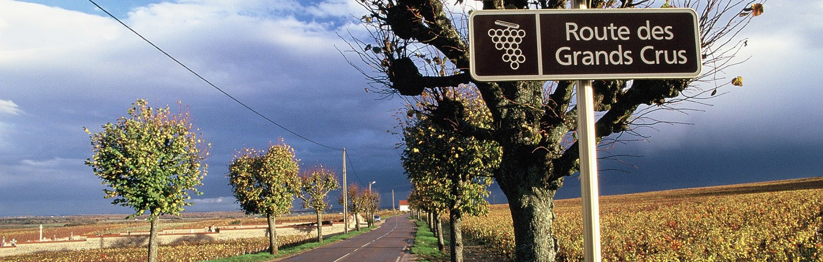 Tours Bourgogne - Journées complètes - Tours au départ de Paris