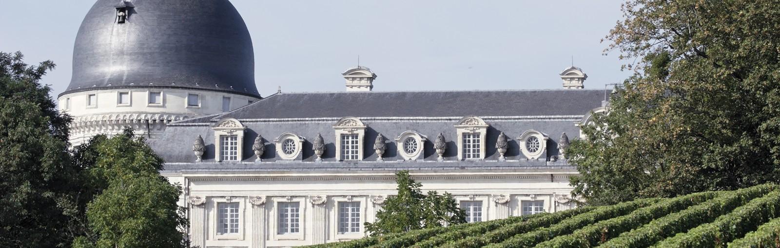 Tours Entre Berry et Loire, vins et châteaux petits et grands - Vallée de la Loire - Circuits au départ de Paris