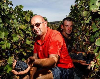 Producteurs de champagne près de Paris