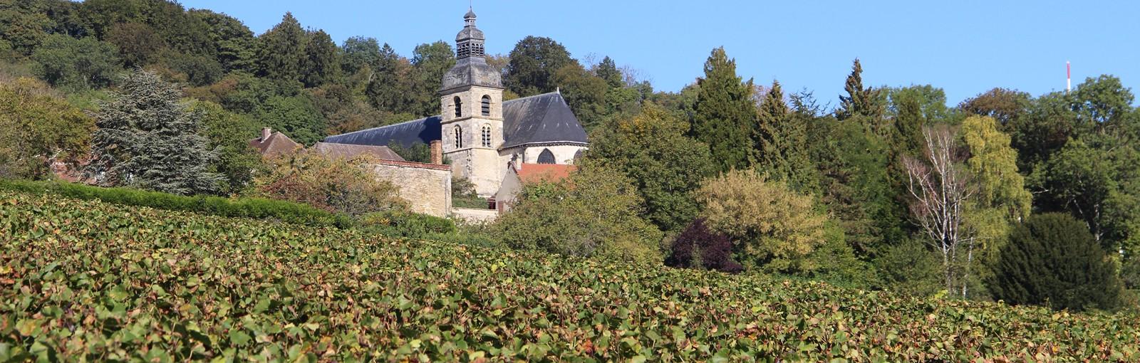 Tours Reims - Champagne - Journées complètes - Tours au départ de Paris